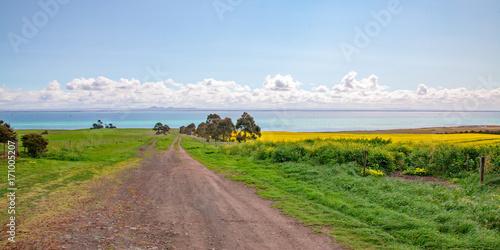 Foto op Plexiglas Blauwe hemel A country road to the bay