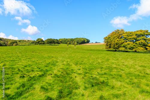 Fotobehang Pool Sussex Landscape in Late Summer