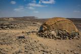 Hut in the remote area of Afar in Ethiopia - 171034659