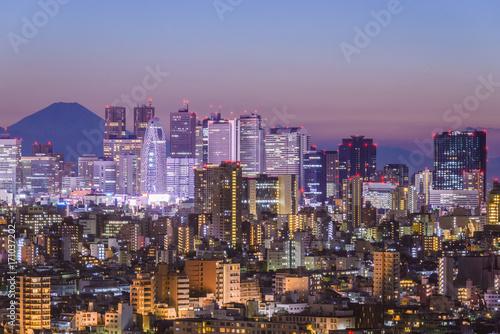 Fotobehang Tokio Tokyo, Japan cityscape with Fuji.