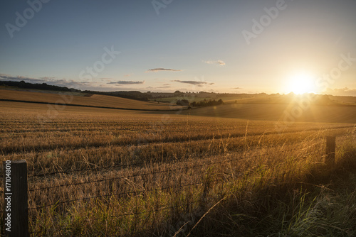 Fotobehang Grijs Freshly harvested fields of barley in countryside landscape bathed in sunset light