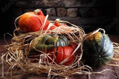 Poster Diverse assortment of pumpkins on a wooden background