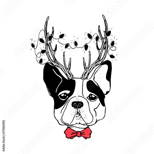Naklejka Vector drawn funny poster. Trendy french bulldog in a deer suit with horns, garland with light bulbs and bow tie. Dog is symbol of Chinese New Year. Hand drawn holiday image.