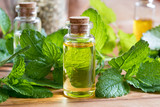 A bottle of melissa essential oil with fresh melissa leaves - 171075005