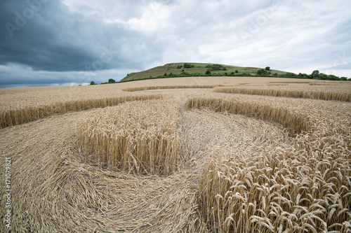 Deurstickers UFO Crop circle at Warminster, Wiltshire, England, ground level view