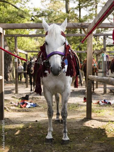 Aluminium Kyoto Festival preparation, horse