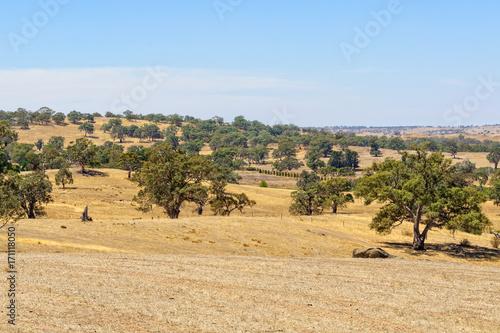 Papiers peints Beige Undulating pastoral landscape in the Barossa Valley - SA, Australia