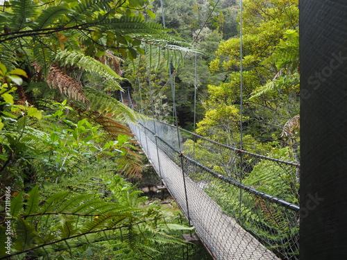 Fotobehang Weg in bos Hängebrücke Abel Tasman Park, Neuseeland