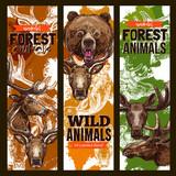 Animal sketch banner set with bear, deer and elk - 171120658