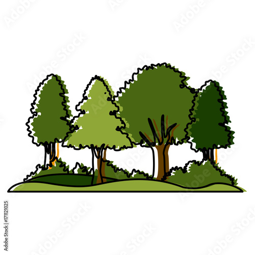 Wall mural Beautiful forest landscape icon vector illustration graphic design