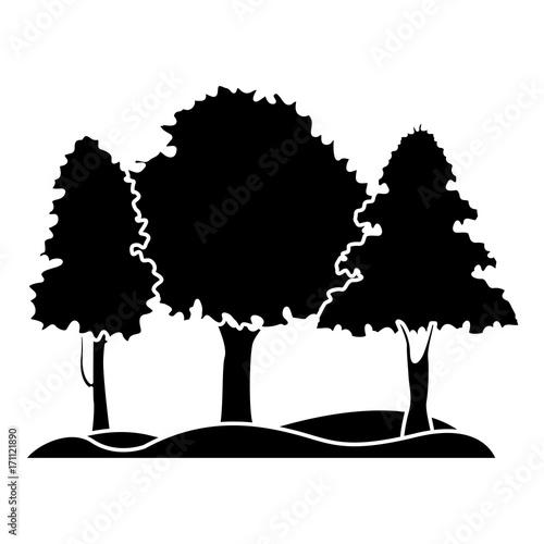 Papiers peints Noir Beautiful forest landscape icon vector illustration graphic design