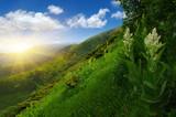 Mountain landscape on sun - 171135699