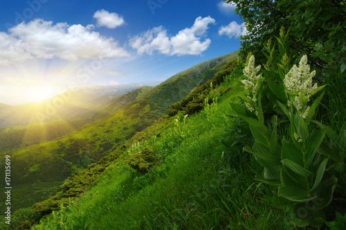 Aluminium Landschappen Mountain landscape on sun