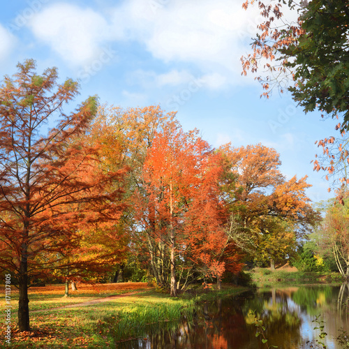 Foto op Plexiglas Blauwe hemel Landschaft 406