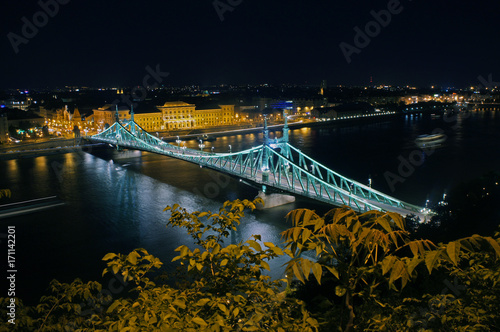 Papiers peints Budapest Liberty Bridge in Budapest by night