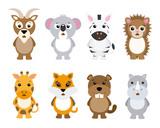 Set of cute animals isolated on white background - 171146659