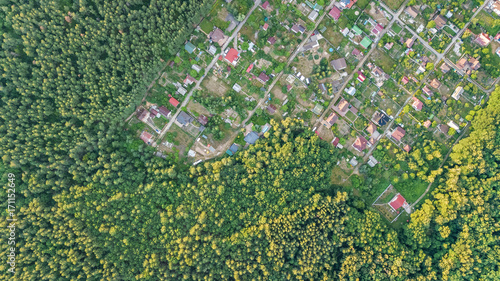 Poster Aerial top view of residential area summer houses in forest from above, countryside real estate and small dacha village in Ukraine