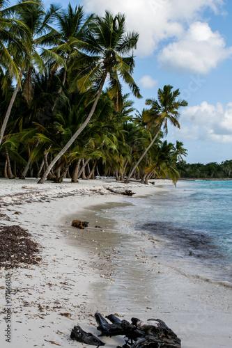 Fotobehang Tropical strand paradise caribbean islands