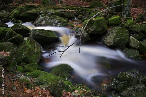 Jedlovy potok - Firtree Stream, Jizera Mountains, Czech Republic Poster