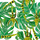 Pattern leaves of monsters and orchids