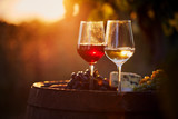 Two glasses of white and red wine with food at sunset