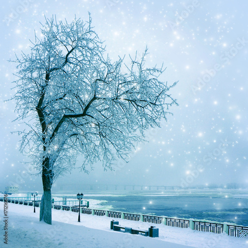 Foto op Plexiglas Blauwe hemel Winter nature, snowstorm
