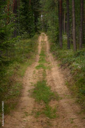 Papiers peints Route dans la forêt country road in forest