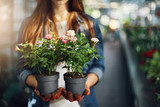 Female gardener holding small roses in pots. Close-up. - 171230098