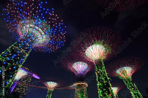 Gardens by the bay at night, Singapore