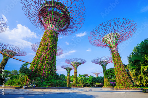 Gardens by the bay at Singapore Poster