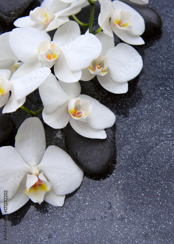 Fotobehang Spa Zen stone and white orchid isolated.