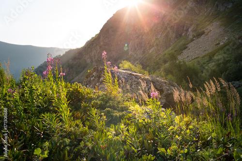 Aluminium Zomer Mountains of the Caucasus