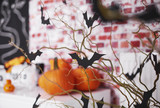 Halloween with bats and pumpkin decorations . - 171310220