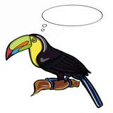 tukan bird thinking