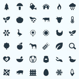 Vector Illustration Set Of Simple Ecology Icons. Elements Foliage, Champignon, Fruit And Other Synonyms Care, Agriculture And Shield. - 171326859