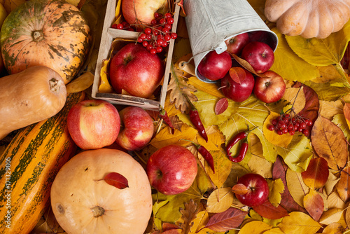 Autumn background from yellow leaves, apples, pumpkin. Fall season, eco food and harvest concept - 171329805