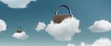 Cloud Datensicherheit - 171331489