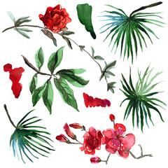 Watercolor hand painted tropical palm leaves and exotic flowers