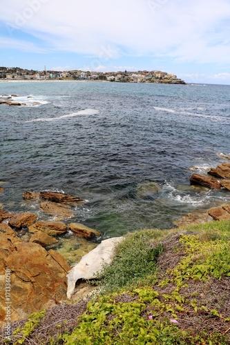 Fotobehang Sydney Bondi Beach Sydney in summer, New South Wales Australien