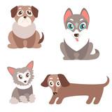 Vector set of puppies. Cute dogs, best friends. Pug, husky, dach