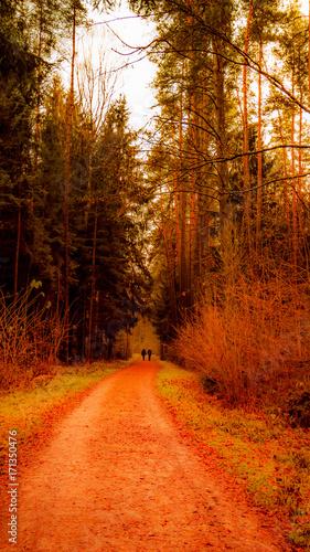 Foto op Canvas Baksteen Herbstspaziergang