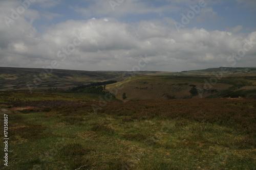 Fotobehang Donkergrijs beautiful nature, walking around Lady Bower, Peak District, UK
