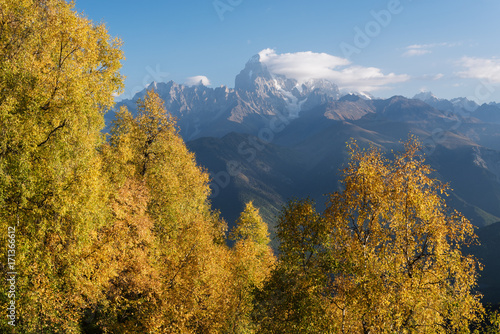 Tuinposter Herfst Autumn Landscape with birch forest and mountain range