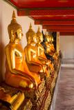 Sitting Buddha statues in Wat Pho - 171371459