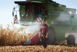 Harvesting of corn field with combine - 171400674