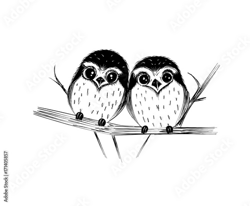 Fotobehang Uilen cartoon Cute couple of owls on branch isolated on white. Vector illustration.