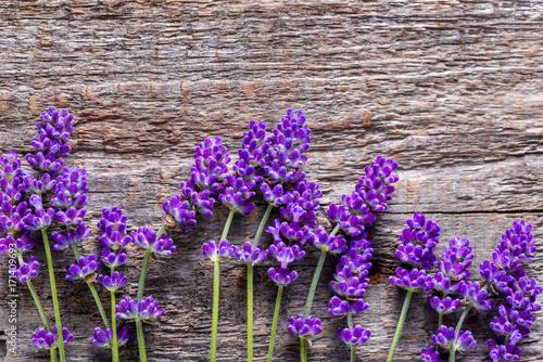 Papiers peints Lavande Lavender flowers on wooden background, top view