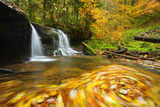 Small Waterfall in Autumn Forest, Colourful Leaves  in Whirlpool