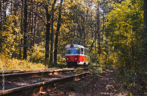 Tramway to forest : colorful tram and railways Canvas