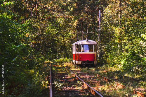 Juliste Tramway to forest : colorful tram and railways